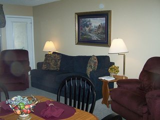 Two bedroom condo 403 with tasteful decor and a great downtown and mountain view