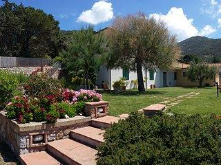 Casa Olivo - Casa Vacanze Punta Polveraia