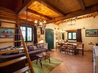 ctma141- schone Ferienhaus befindet sich in einem abgelegenen Ort von Olivenbaum