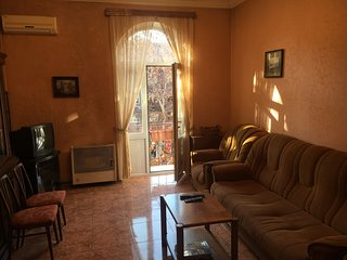 Comfortable airconditioned apartment steps from center of Yerevan