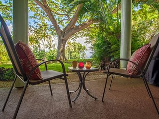 Enjoy shady ocean view lanai w/BBQ, walk to Anini Beach, shopping, dining