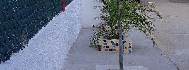 jardineras de fachada de la casa