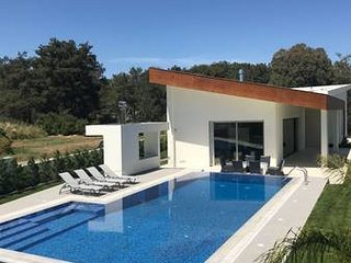 Luxury Villa with Swimming pool at Kornos Forest