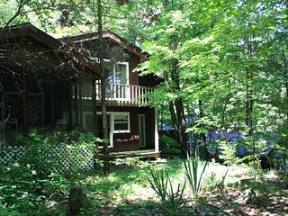 NICE, BIG, FRIENDLY HOUSE ON LAKE GEORGE.  Rates reduced 15% Nov. 1 - Dec. 20.