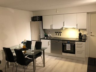 Apartment in the center of Oslo with Internet, Lift, Parking, Terrace (907800)