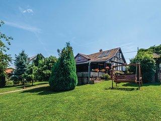 3 bedroom Villa in Brezovljani, Croatia - 5672816