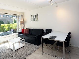 Apartment in the center of Oslo with Internet, Lift, Parking, Terrace (1027987)