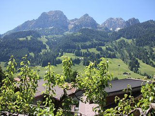 Greatly renovated 400 year old Chalet near Gstaad