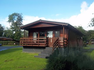 Primrose Lodge 5 with Hot Tub, Newton Stewart, Dumfries & Galloway