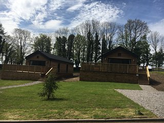 Squirrel Lodge 42 with Hot Tub in Newton Stewart, Dumfries & Galloway