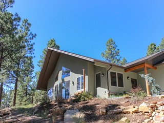 Brand new, secluded home w/large deck, 2 fireplaces, mountain view