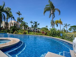 Palms at Wailea Unit #2305 1Bd/2Ba Quiet, Very Private! Near Beach, Sleeps 2