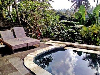 Villa Amanda D' Ubud