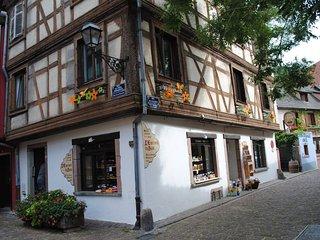 Coeur d'Alsace 1 : Appartement de charme sur la route des vins d'Alsace