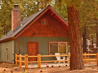 Adorable mountain cabin perfect for small families. Close to all attractions!