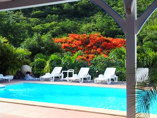 Nature Paradise Cottage**** Surrounded by a marvellous tropical forest