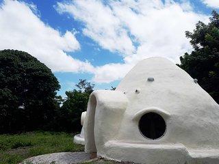 Little White Dome