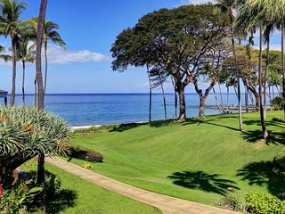 Classy 2 BD Condo W/ Excellent Amenities Wailea Elua Village # 1204