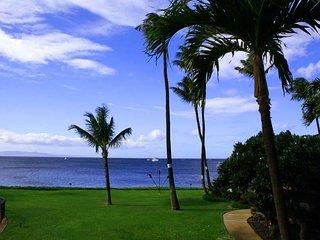 Fantastic Ocean View 2 BDRM Condo - Maalaea Surf #C8
