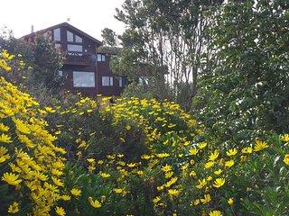Casa arriendo diario Lago Llanquihue