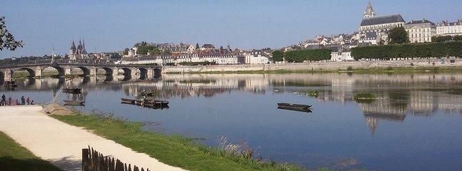vue générale de Blois et la Loire