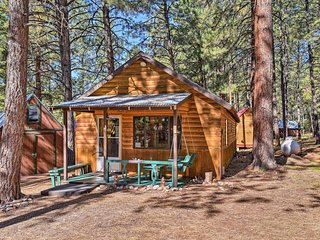 NEW-Rustic Chama Cabin w/Screened Porch, Fireplace
