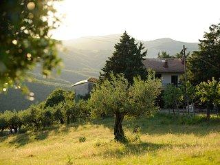 casa fagiano