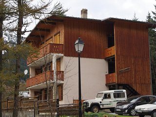 location appartement 60m2 ds chalet independant a 400 m du  centre de la station