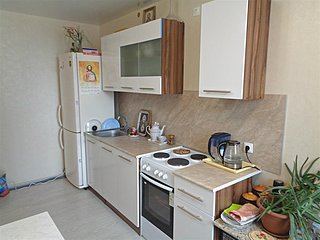 Comfortable flat near Ligovsky