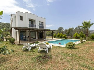 Bodrum Golturbuku Villa With Private Swimming Pool And Sauna For Summer Rent