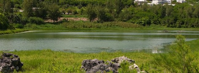 Spittal Pond