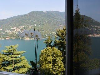 Villa Vittoria, Lago di Como, Blevio, Appartamento 1