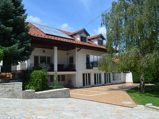 Luxury House with Indoor Pool near Belgrade