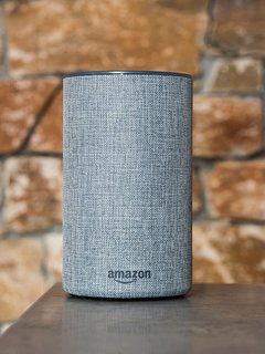 Amazon Echo Speakers throughout the house.