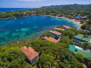 Coral Vista #4