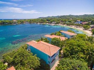Coral Vista #3