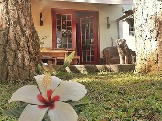 Lazy Dog Homestay - Pet-friendly Accommodations in Baguio