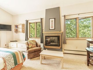 Serene Studio w/ Fireplace, Balcony & Ski Storage - Walk to Lift & Village