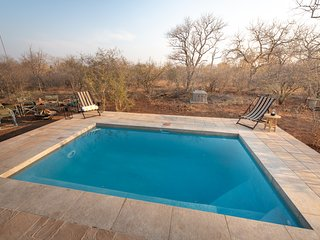 Rooibos Bush Lodge Hoedspruit Wildlife Estate