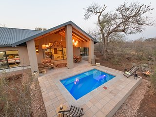 Rooibos Bush Lodge Hoedspruit Wildlife Estate