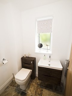 Our downstairs WC