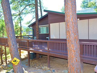 Cottage in the Pines! - Romantic Getaway