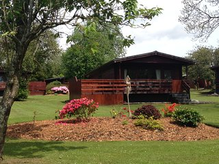 Bluebell Lodge 3 with Hot Tub