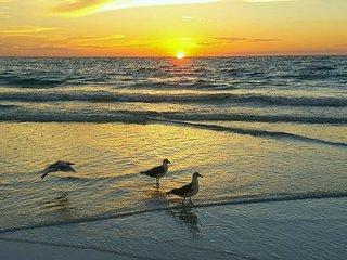 Treasure Island Beach Retreat Sleeps Up To 8