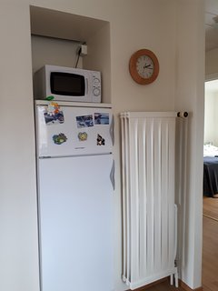 The microwave oven and the fridge