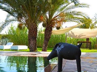 Oasis de tranquillit, en bordure du dsert Agafay