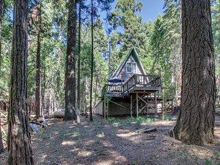 NEW LISTING! Quaint cabin with 2 decks near lake, beach, fishing, and hiking