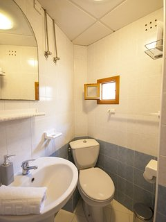The compact en-suite bathroom with a small shower.