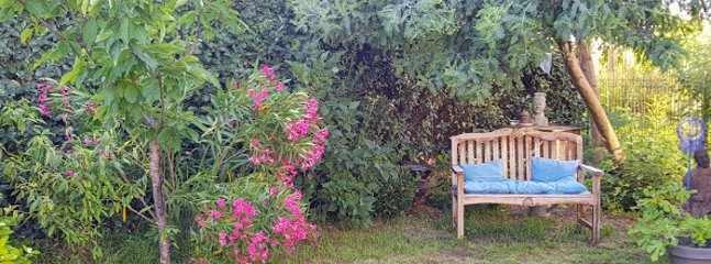 Um lugar agradável no jardim para descansar, sonhar ou ouvir os pássaros