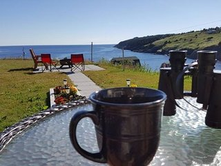 Historic Seaside Cottage (10 mins from St. John's)